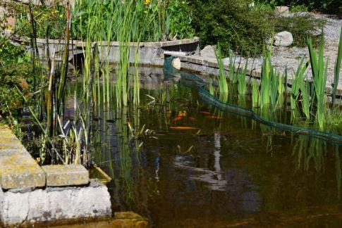 Brise-vue comme clôture en 2014. anti-poissons.