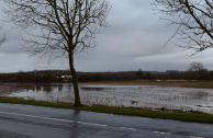 Champs inondés à Marquise Ambleteuse Nature 2016