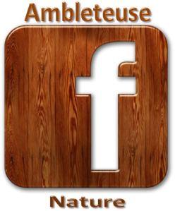 facebook ambleteuse nature