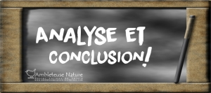 analyse et conclusion