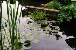 bassin 1